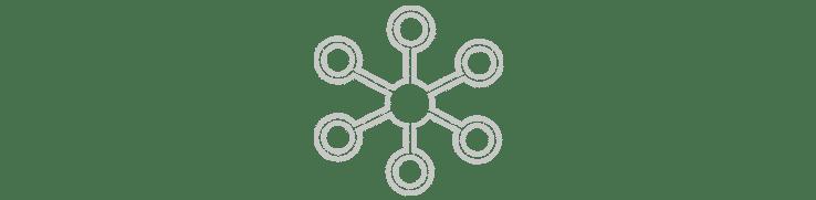 precise-biometrics-organisation