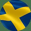 SE flag circle 100px